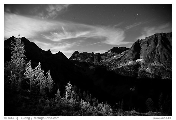 Larch trees and Fisher Creek cirque at night, North Cascades National Park.  (black and white)
