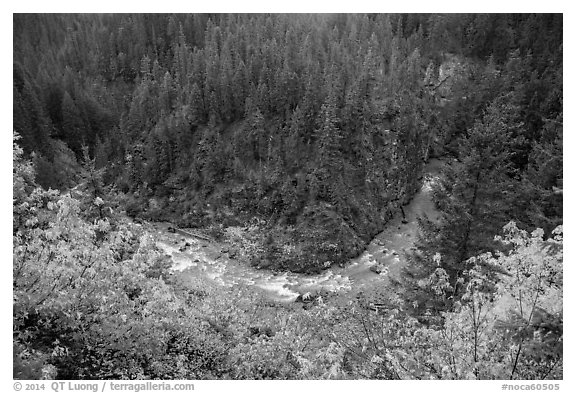Bend of Agnes Creek from above in autumn, Glacier Peak Wilderness.  (black and white)