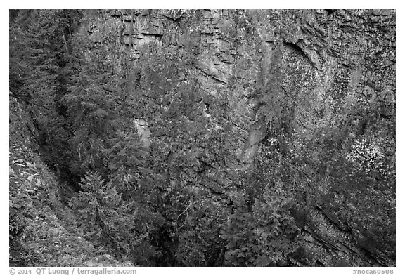 Sheer Skagit Gneiss walls of Agnes Gorge, Glacier Peak Wilderness.  (black and white)