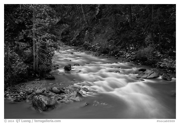 Agnes Creek, Glacier Peak Wilderness.  (black and white)