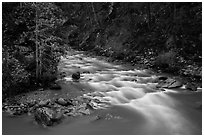 Agnes Creek, Glacier Peak Wilderness.  ( black and white)