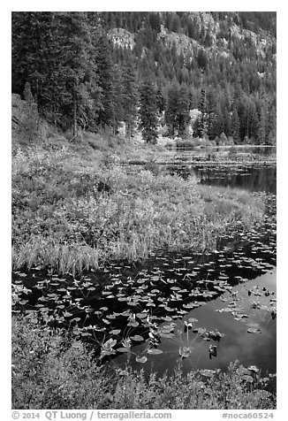 Coon Lake in autumn, Stehekin, North Cascades National Park Service Complex.  (black and white)