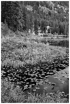 Coon Lake in autumn, Stehekin, North Cascades National Park Service Complex.  ( black and white)