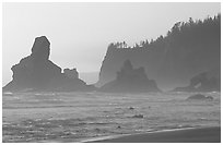 Sea stacks and arch on Shi-Shi Beach. Olympic National Park ( black and white)