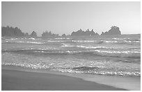 Seastacks, Shi-Shi Beach. Olympic National Park ( black and white)