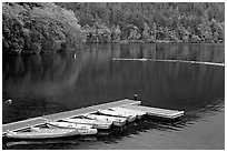 Emerald waters, pier and rowboats, Crescent Lake. Olympic National Park ( black and white)