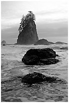 Rocks, seastacks and surf, Second Beach. Olympic National Park ( black and white)