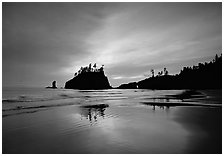 Seastacks reflected at sunset on wet sand, Second Beach. Olympic National Park ( black and white)