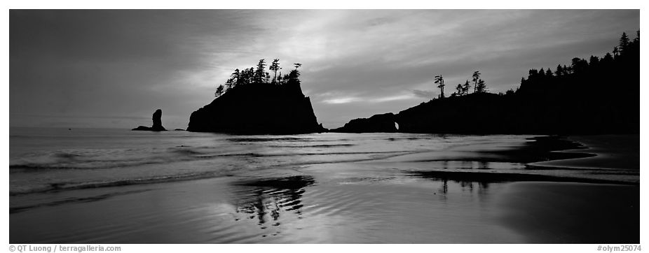 Second Beach with wet sand reflections. Olympic National Park (black and white)