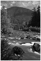 Elwha River. Olympic National Park ( black and white)