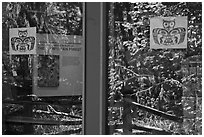 Rain forest, Hoh rain forest visitor center window reflexion. Olympic National Park ( black and white)