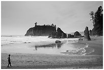 Visitor looking, Ruby Beach. Olympic National Park ( black and white)