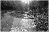 Sol Duc River interpretive sign. Olympic National Park ( black and white)