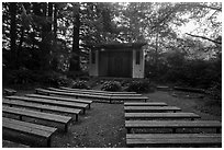 Amphitheater, Mora Campground. Olympic National Park ( black and white)