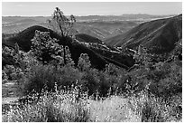 Summer grasses and rolling hills. Pinnacles National Park ( black and white)