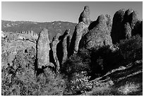 Rhyolite spires. Pinnacles National Park ( black and white)
