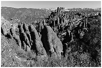 Monolith and colonnades. Pinnacles National Park ( black and white)