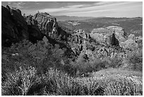 West side rock formations and spring wildflowers. Pinnacles National Park ( black and white)