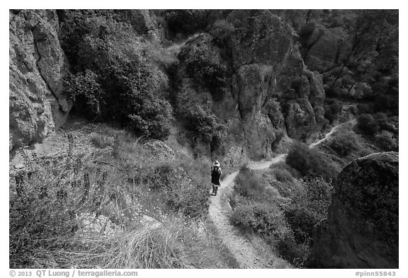 Hiker on trail in spring. Pinnacles National Park (black and white)