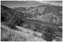 Valley. Pinnacles National Park, California, USA. (black and white)