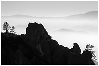 Silhouetted pinnacles and trees, foggy mountains. Pinnacles National Park ( black and white)