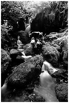 Cascade and mossy rocks, Prairie Creek. Redwood National Park, California, USA. (black and white)