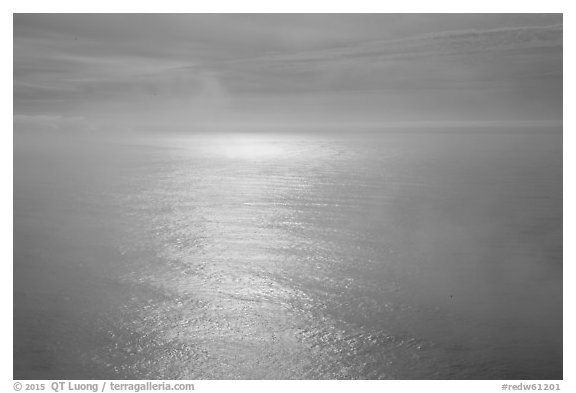 Ocean with sun reflection and fog. Redwood National Park (black and white)