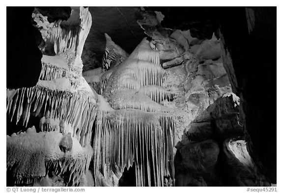 Ornate calcite stalactites, Crystal Cave. Sequoia National Park, California, USA.