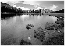 Alpine tarn near Tioga Pass. Yosemite National Park ( black and white)