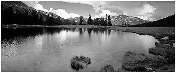 Alpine tarn near Tioga Pass. Yosemite National Park (Panoramic black and white)