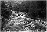 Lower Merced Canyon with wide Merced River. Yosemite National Park ( black and white)