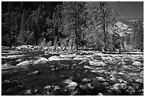 Wide stretch of Merced River in spring, Lower Merced Canyon. Yosemite National Park ( black and white)