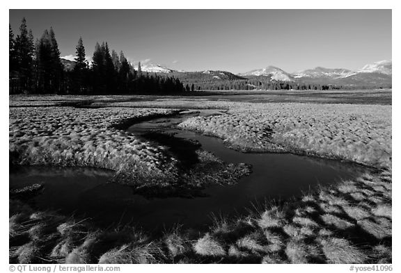 Meandering stream and grasses, early spring, Tuolumne Meadows. Yosemite National Park (black and white)
