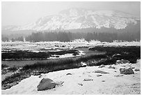 Snowy landscape near Tioga Pass. Yosemite National Park ( black and white)