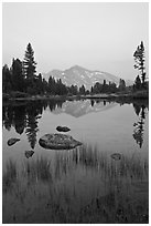 Mammoth Peak reflected in tarn at sunset. Yosemite National Park ( black and white)