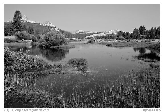 Tuolumne River and distant domes, early morning. Yosemite National Park (black and white)