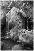Base of Wapama fall in summer, Hetch Hetchy. Yosemite National Park ( black and white)
