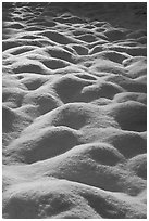 Snow mounds, Cook Meadow. Yosemite National Park, California, USA. (black and white)