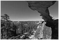 Indian Rock arch and forest, morning. Yosemite National Park, California, USA. (black and white)