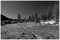 Pacific Crest Trail, Lyell Canyon. Yosemite National Park ( black and white)