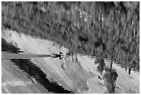 Duck and reflections, Merced Lake. Yosemite National Park ( black and white)