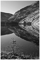 Pine sappling and granite domes reflected, Merced Lake. Yosemite National Park ( black and white)