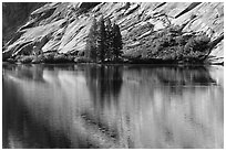 Trees and granite slabs reflected, Merced Lake. Yosemite National Park ( black and white)