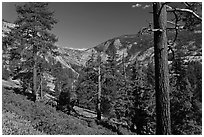 Above Echo Creek. Yosemite National Park ( black and white)