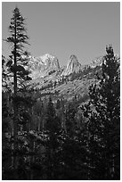 Spires of Matthews Crest at dusk. Yosemite National Park ( black and white)