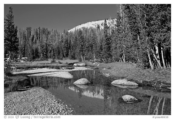 Stream in Long Meadow. Yosemite National Park, California, USA.