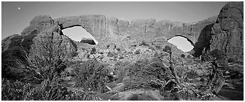 Sandstone windows. Arches National Park (Panoramic black and white)