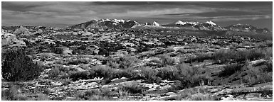 Petrified dunes and mountains in winter. Arches National Park (Panoramic black and white)