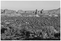 Desert shrub, flatlands, and Windows group in distance. Arches National Park ( black and white)
