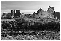 Cottonwoods of Courthouse Wash and Courthouse Towers. Arches National Park ( black and white)